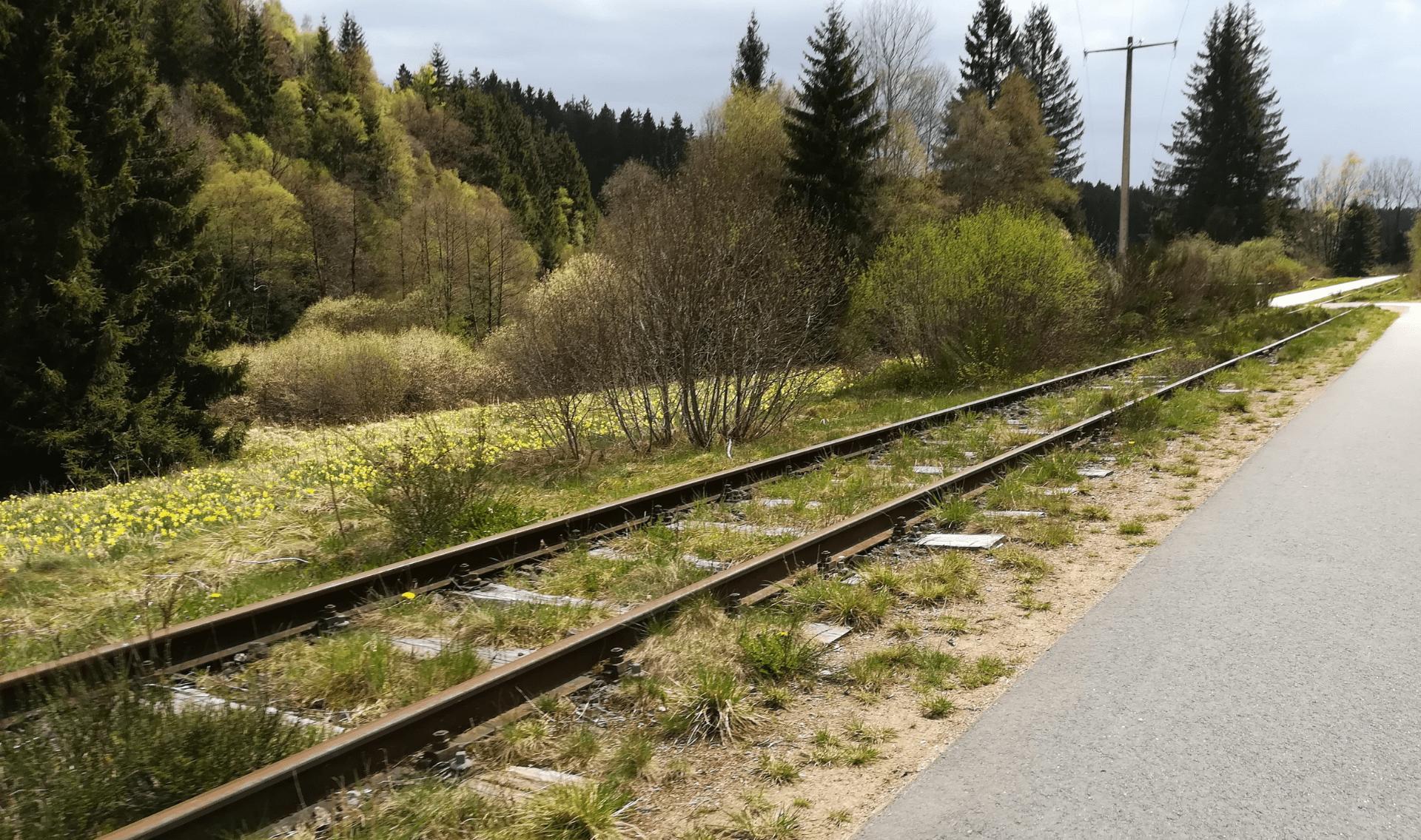 Fietsvakantie Ardennen en Eifel (Vennbahn)