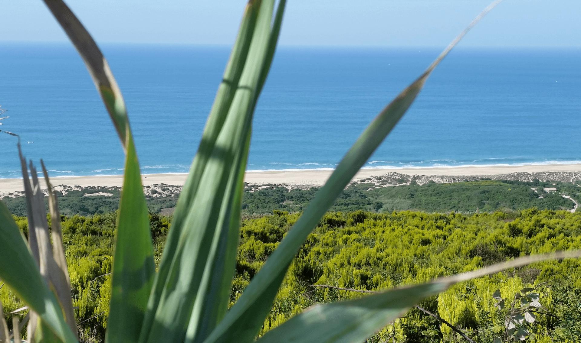 Fietsvakantie langs de Zilverkust in Portugal - Costa da Prata