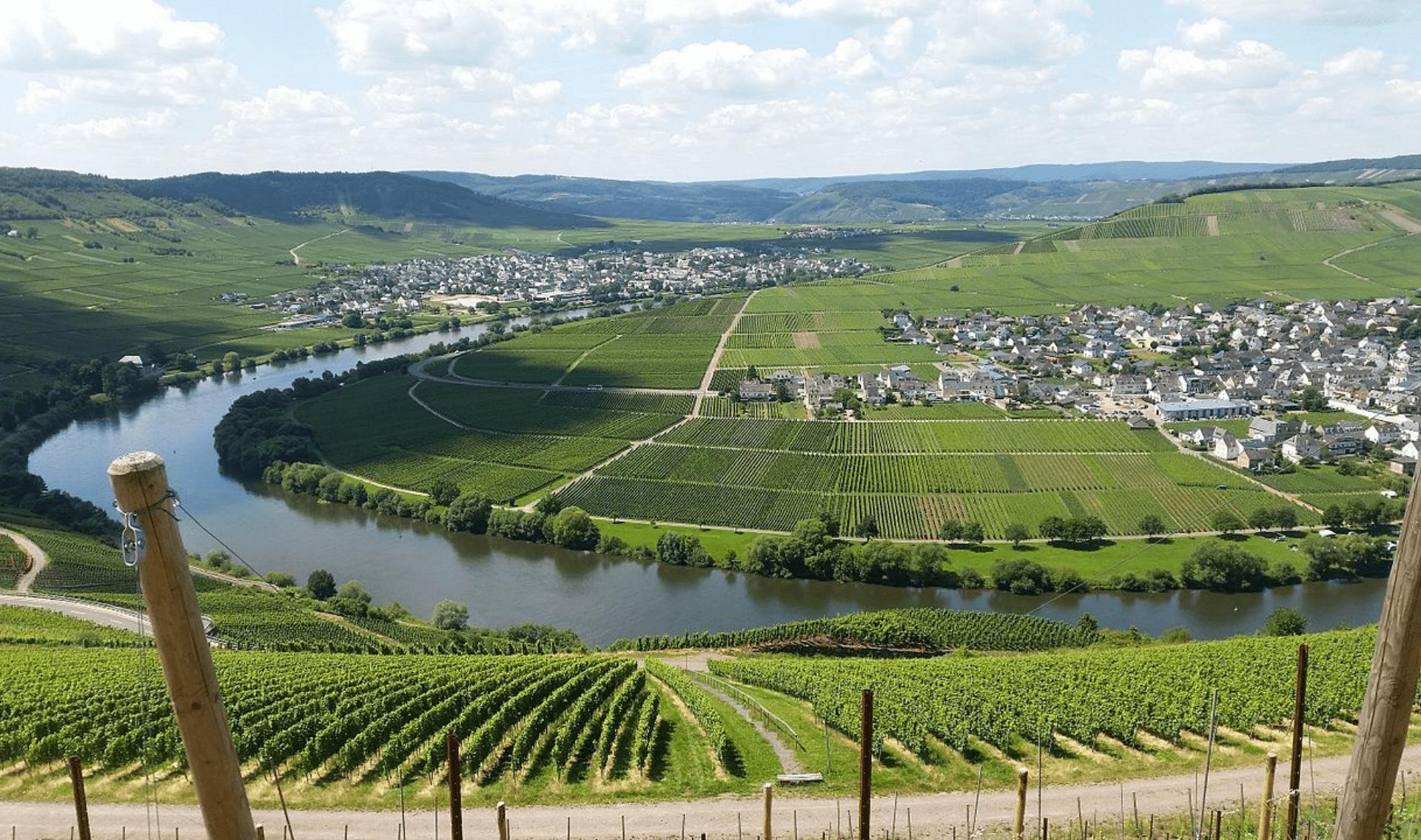 Fietsvakantie Moezel (vanaf Trier)