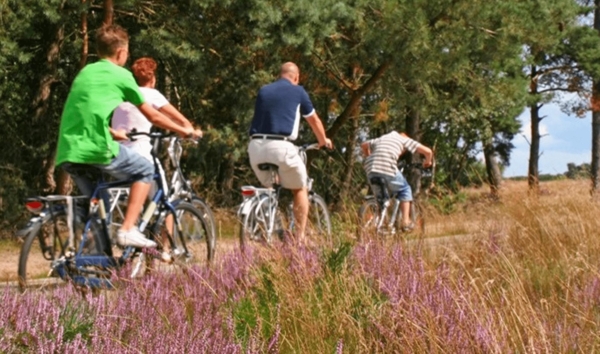 Fietsvakantie Lüneburger Heide