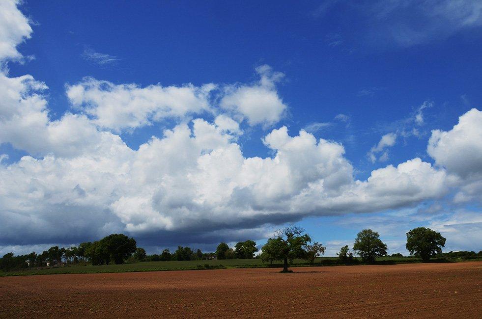 Open veld met blauwe lucht