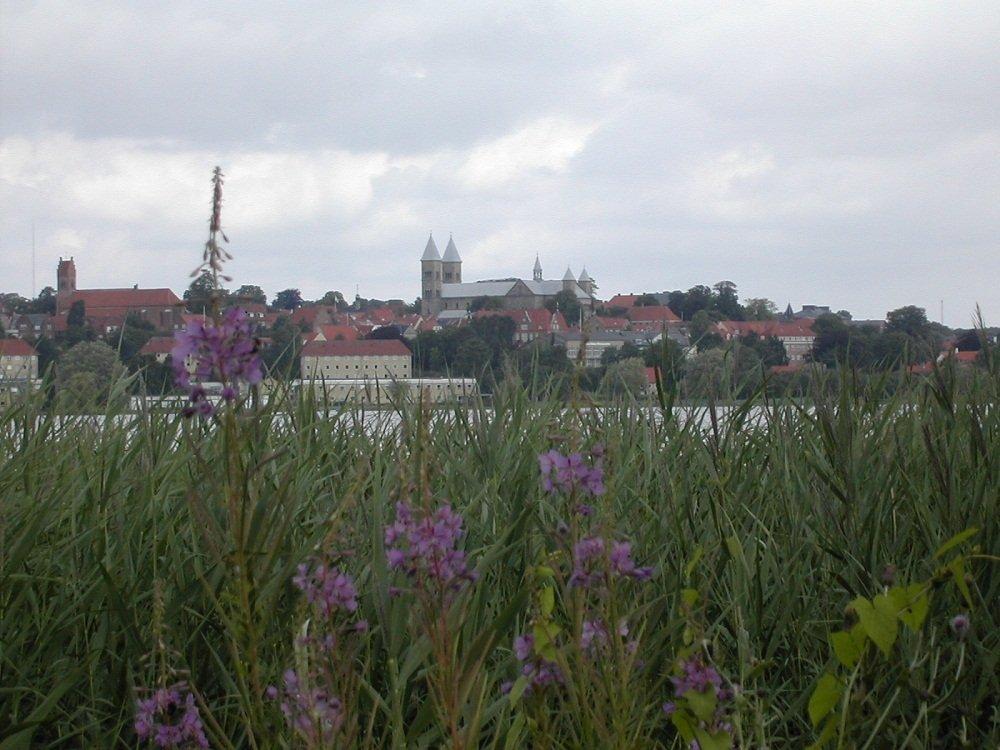 Gezicht op Viborg
