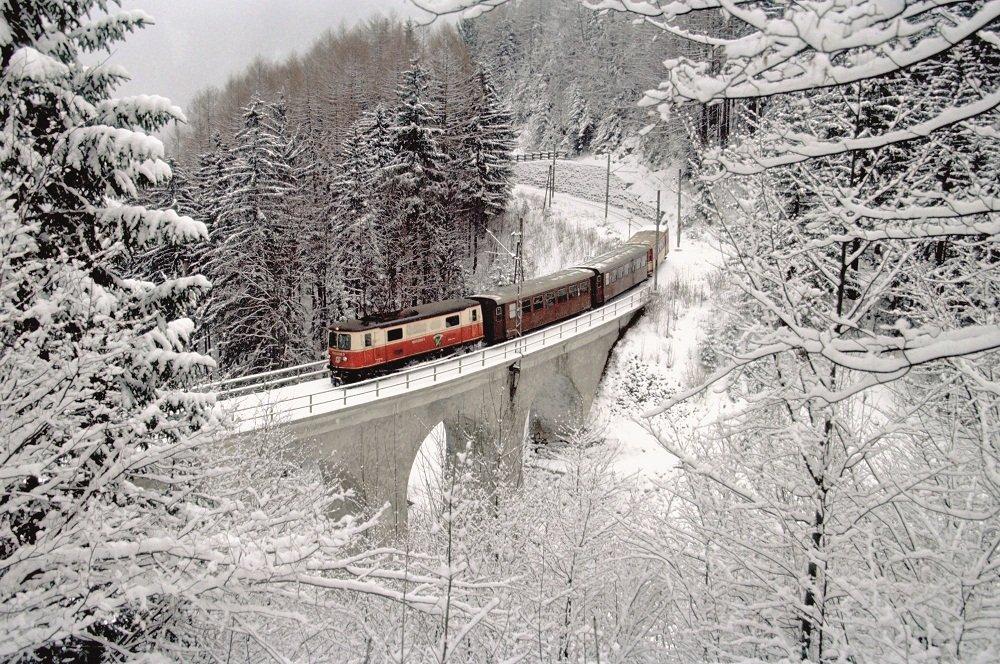 trein door winterlandschap -brug