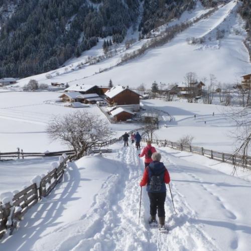 Sneeuwschoenwandelen in het Gschnitztal