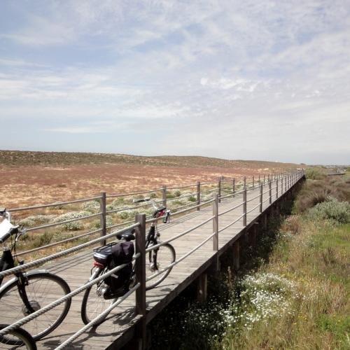 Fietsvakantie Algarve time out kijkend naar de vogels
