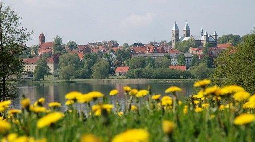 Viborg, bloemen