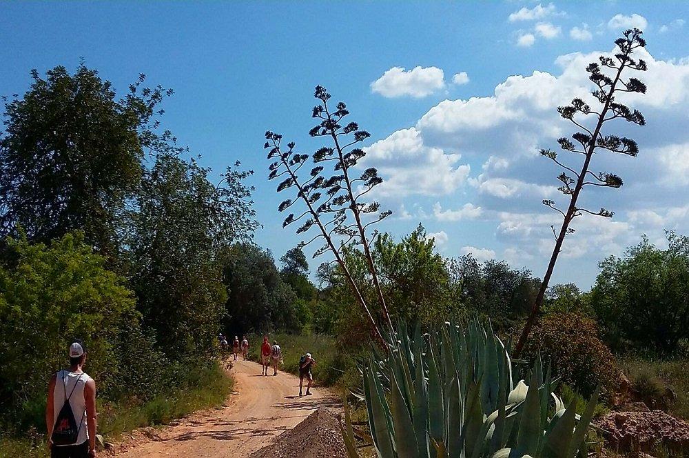 Wandelvakantie Algarve o.l.v. Romy van Dieren