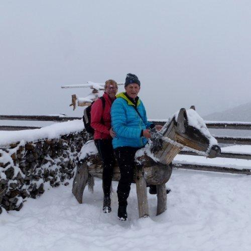 De beloning naar een mooie/zware wandeling naar de Postalm , uitrusten op het paard