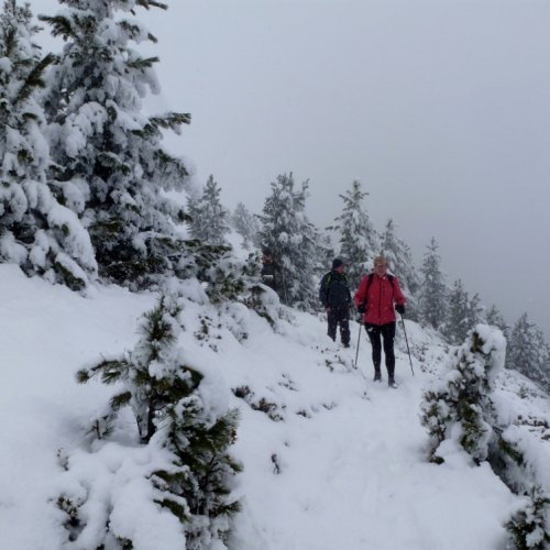 Wandeling van de Postalm naar de gondelbaan Plose via het moeilijke pad