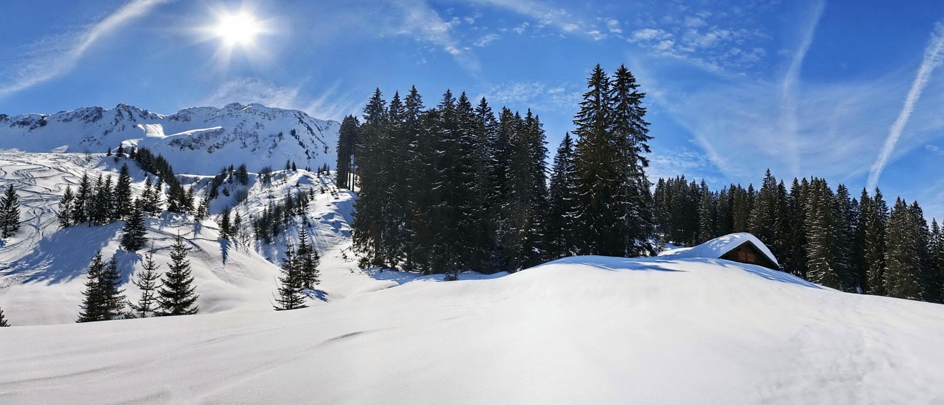 Wintervakantie met begeleiding voor wandelen, langlaufen, sneeuwschoenwandelen of skiën