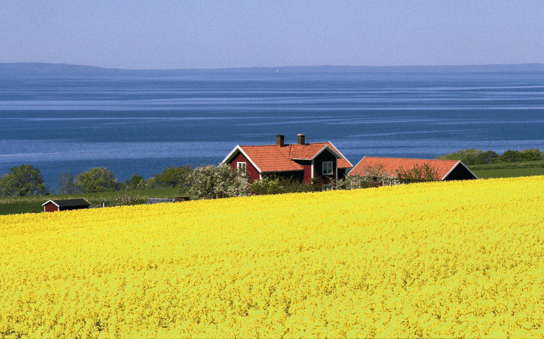 Unieke ervaring in het Zweedse fietslandschap boekt u via Fitál Vakanties