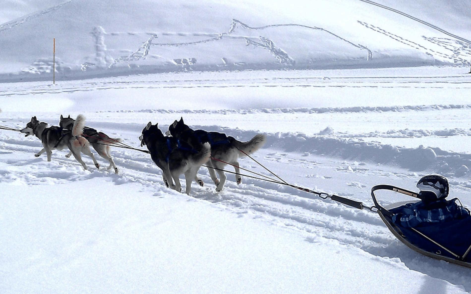 Zweeds winteravontuur inclusief vele winteractiviteiten zoals sneeuwschoenwandelen, ijsvissen, langlaufen of nordic walking.