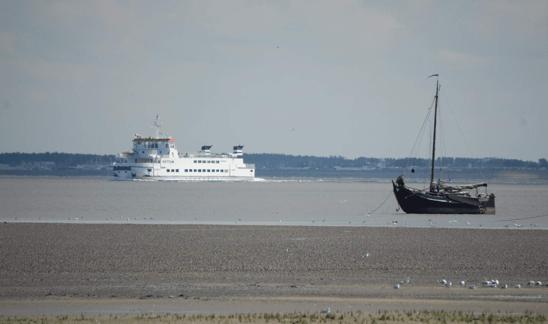 Fietsvakantie Groninger Hoge Land & Schiermonnikoog