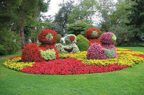 Park gekleurde struiken