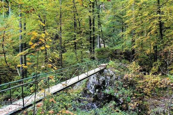Juliana Trail etappe 7 Brug over Bistrica