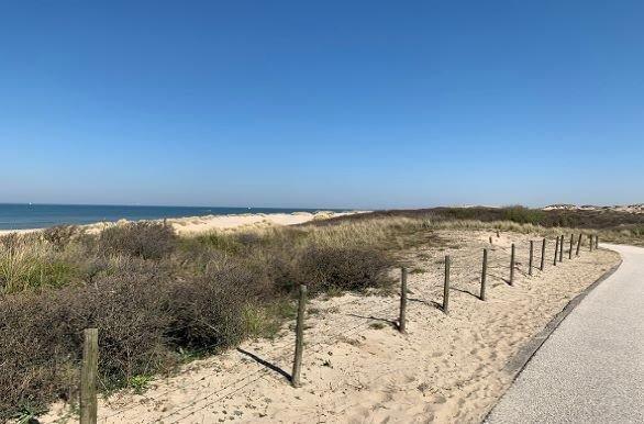 Zuiderstrand duinen