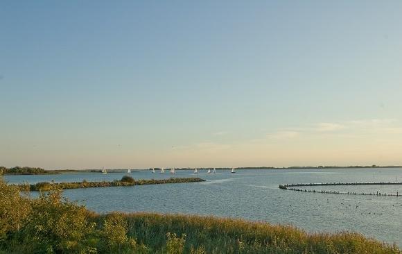 Lauwwersmeer
