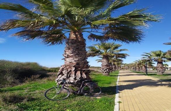 Dag 7 Jerez Cadiz