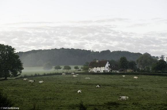 Vakwerkhuisje in landschap