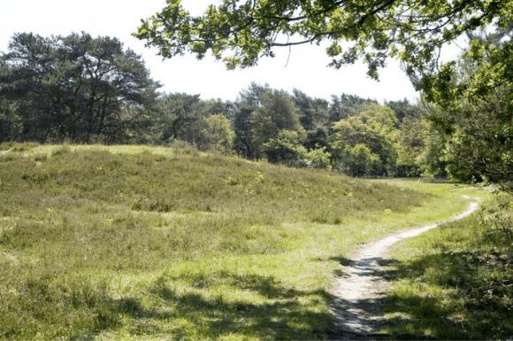 Wandelvakantie Noord-Drenthe
