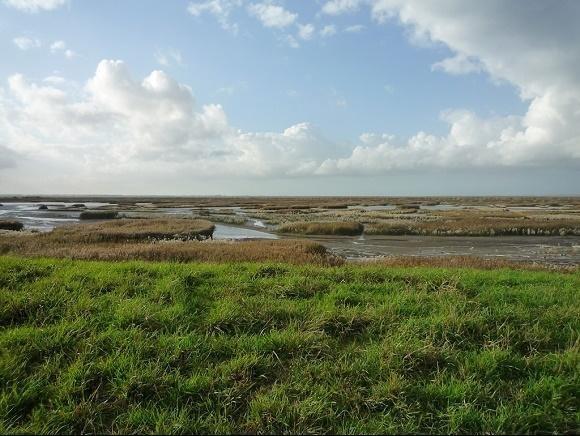 Zeeland Verdronken land van Saeftinghe