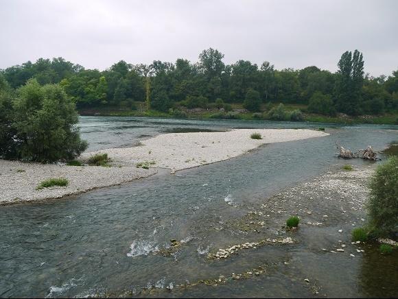 Rijn boven Basel